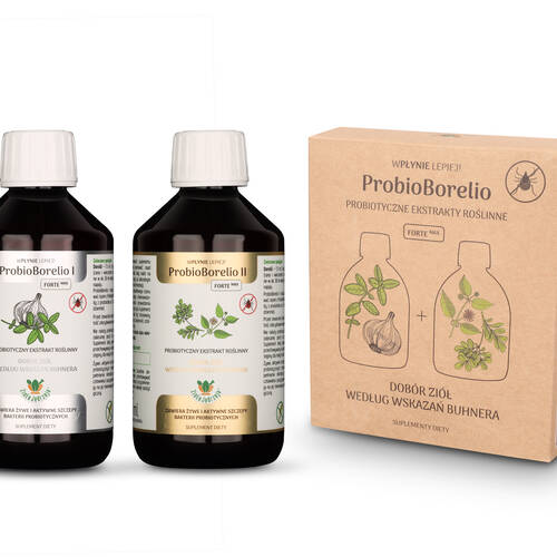 JOY DAY Probioborelio (2x300ml) (600ml) - BIO